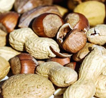 eiweiss proteine nüsse